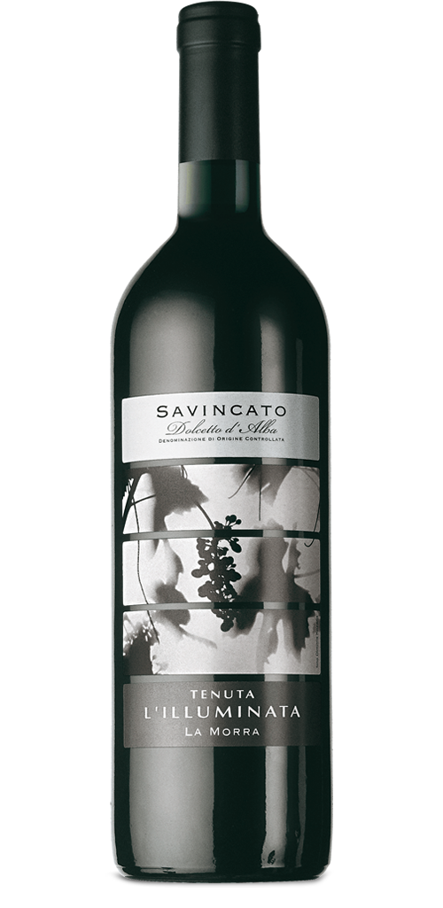 savincato-2